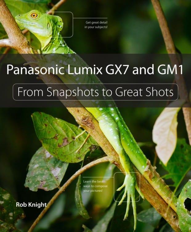 LUMIX-GX7-GM1-manual