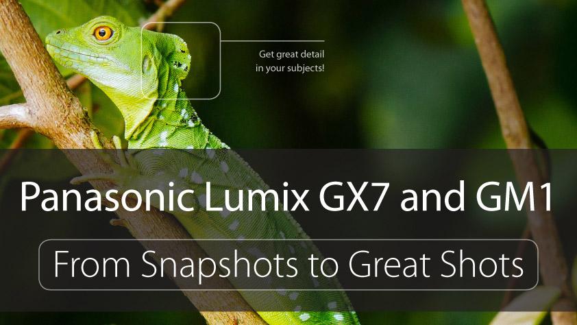 LUMIX GX7 GM1 book