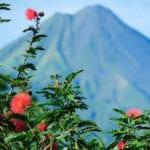 Costa Rica Photo Workshop arenal volcano