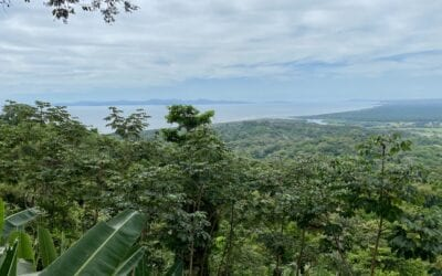 Covid and Costa Rica- Nature Travel in 2021